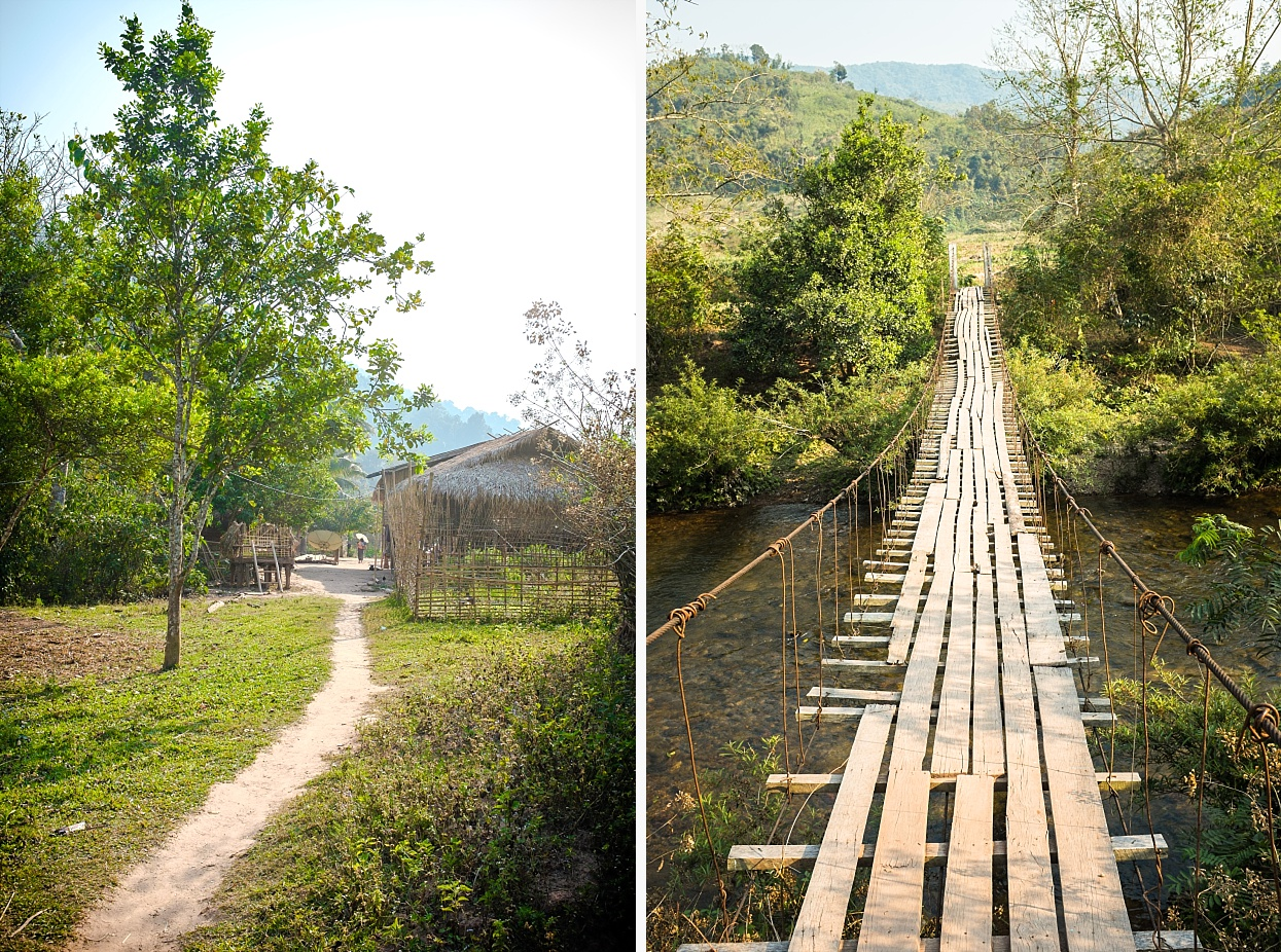 Jungle hike, Nam Ha National Park